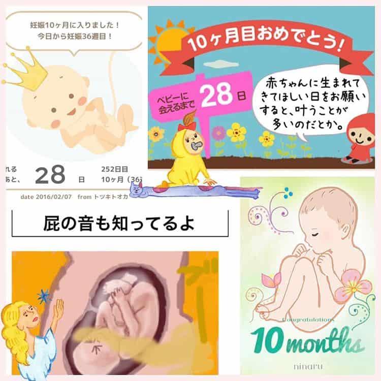 子育てアプリ 妊娠週刊パパ